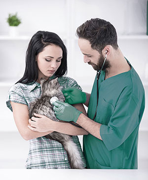 Veterinary Support Services